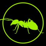 avatar user 1 1630102582